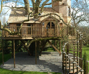 tree house, house, and treehouse image