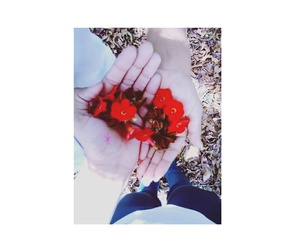 flowers, love, and red image