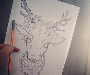 ideas, deer, and draw image