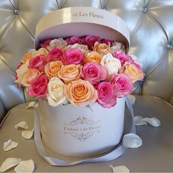 Maison Des Fleurs Shared By 𝓈𝒶𝓂𝒶𝓃𝓉𝒽𝒶 𝓈𝑒𝓇𝑒𝓃𝒶