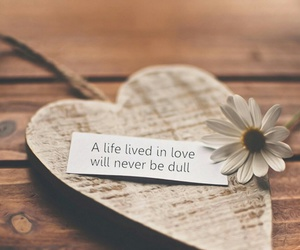 love, heart, and life image