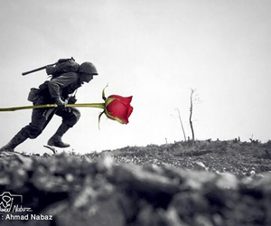 peace, war, and kurdish artist image