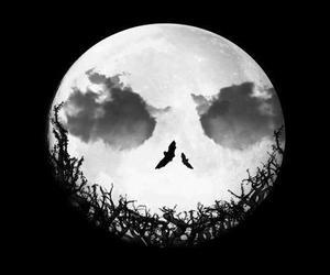 moon, Halloween, and jack image