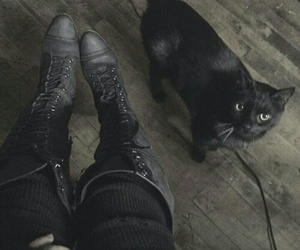cat, black, and witch image