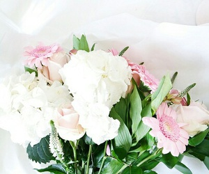 flowers, tumblr, and cute image