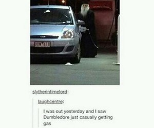 harry potter, dumbledore, and tumblr image