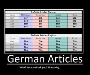 german, funny, and grammar image