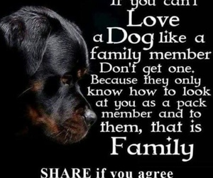 dog, family, and love image