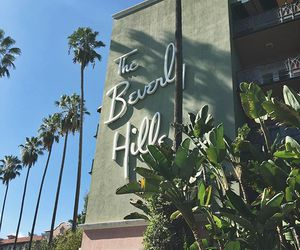 beauty, Beverly Hills, and beverly hills hotel image