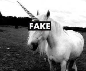 unicorn, fake, and black and white image