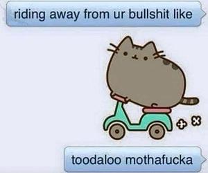 funny, cat, and bullshit image