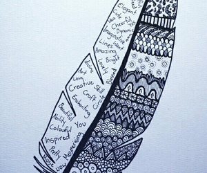 feather, plume, and Motif image