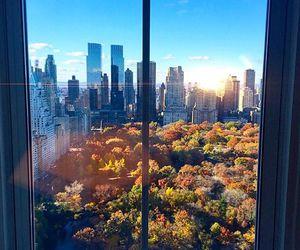 new, centralpark, and newyork image