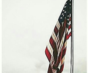 usa, flag, and america image