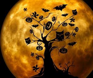 Halloween, moon, and tree image
