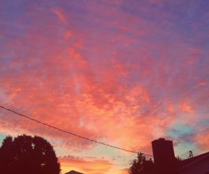 sky and summer mckeen image