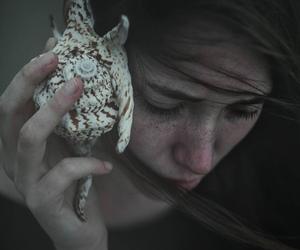photography and seashell image