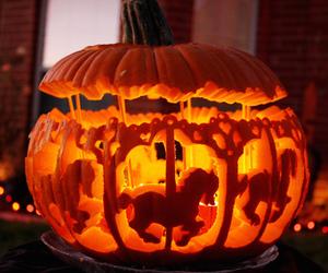 Halloween, pumpkin, and horse image