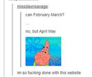 tumblr, funny, and lol image