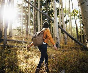 adventure, forest, and girl image