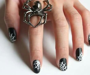 nails, spider, and ring image