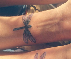 dragonfly, forever, and sisters image