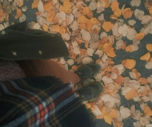 arrive, coming, and feuilles image