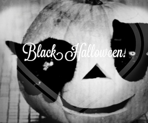 black, cats, and Halloween image