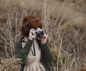 photography, nature, and photo image