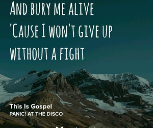 P!ATD, panic! at the disco, and brandon urie image