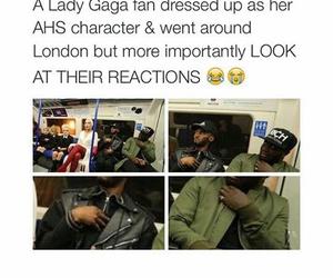 funny and Lady gaga image