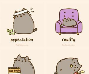 cat, new year, and pusheen image