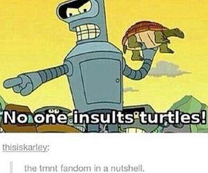 funny, pics, and puns image