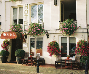 hotel, flowers, and vintage image