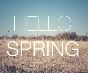 spring, hello, and text image