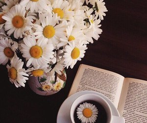 tea, book, and daisy image