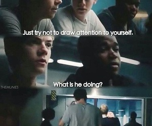 newt, thomas, and the scorch trials image