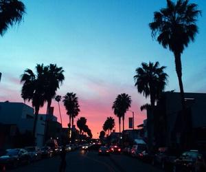 palms, sky, and skyline image