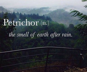 rain, petrichor, and quotes image