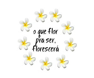 flor, frase, and tumblr image