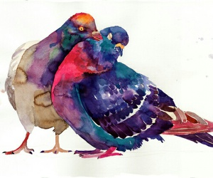 art, pigeon, and bird image