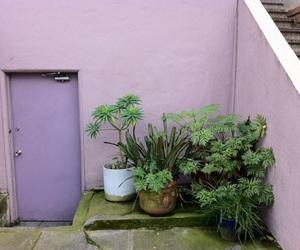 plants, purple, and grunge image