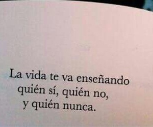 book, vida, and frases image