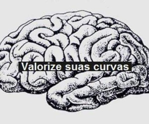 brain and curves image