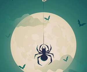 Halloween, spider, and wallpaper image