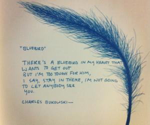 bluebird, blue, and Bukowski image