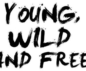 young wild & free image