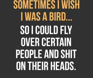 bird, quotes, and shit image