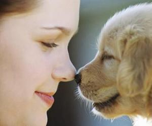 dog and love image
