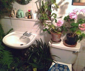 plants, flowers, and bathroom image
